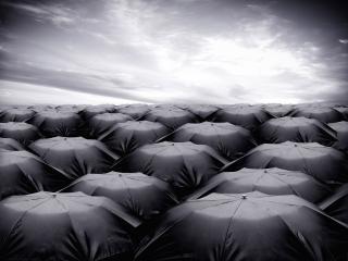 обои Люди под зонтиками фото