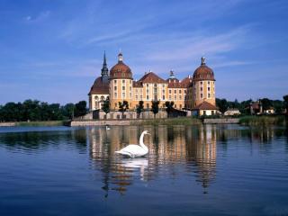 обои Замок и лебедь фото