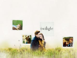 обои Белла и Эдвард гуляют в поле фото