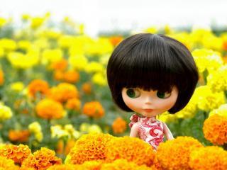 обои Кукла с короткой стрижкой среди желтых цветов фото
