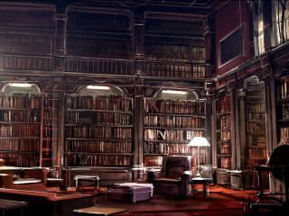 обои Большая библиотека фото