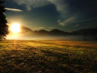 обои Восход солнца на лугу фото