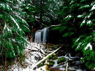 обои Водопад зимой фото