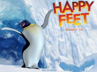 обои Делай ноги. Пингвин фото