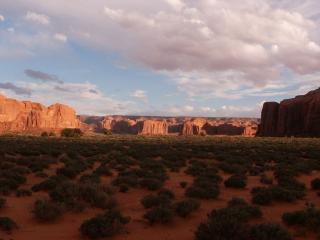 обои Прогулка по пустыне фото