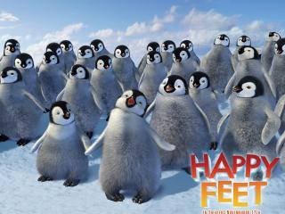 обои Толпа пингвинят фото