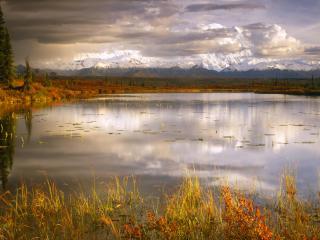 обои Пруд осенью близ горы Мак-Кинли, Национальный Парк Денали,   Аляска фото