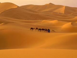 обои Пустыня Сахара Марокко фото
