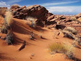 обои Пустынная местность фото