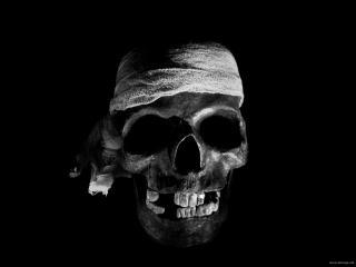 обои Забинтованный череп фото