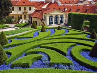 обои Гладко выстриженные садовые узоры фото