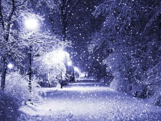 обои Снежная аллея в свете фонарей фото