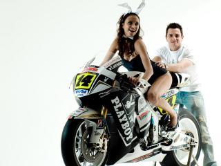 обои Крольчонок на мотоцикле фото