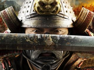 обои Игра  Shogun Total War фото