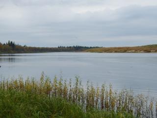 обои Протока Орда Шар на реке Печора фото