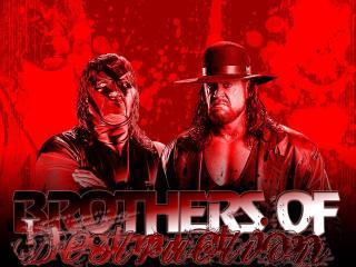 обои Рестлинг - The Brothers of Destraction фото