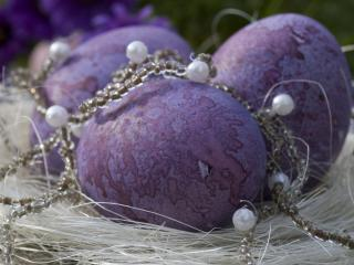 обои Пасхальные фиолетовые яйца фото