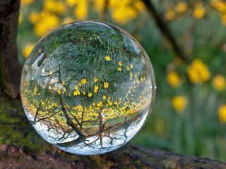 обои Хрустальный шар весны фото