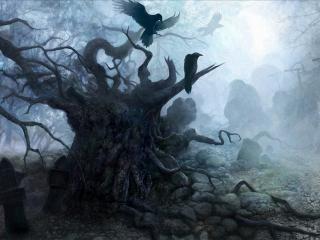 обои Дерево из сонной лощины фото
