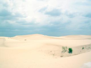 обои Пустыня в техасе фото