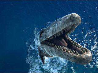обои Морское зубастое чудовище фото