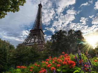 обои Эйфелева башня со стороны живописного парка фото