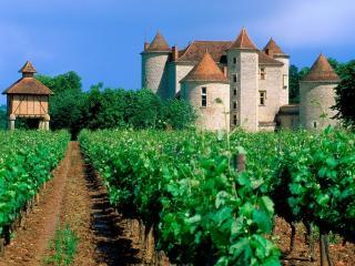 обои Сад у французского замка фото