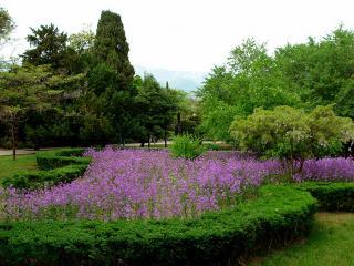 обои Ботанический сад в Крыму фото