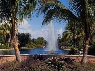 обои Фонтан посреди водоема в тропиках фото