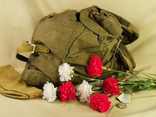 обои Цветы и рюкзак фото