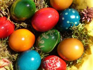 обои Пасхальные яйца на траве фото