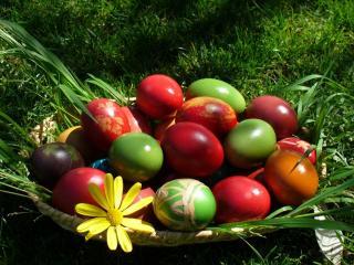 обои Пасхальные яйца на природной тарелке фото
