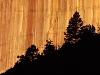 обои Национальный парк фото
