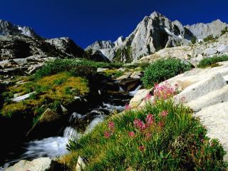 обои Трава,   горы,   река фото