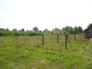 обои Деревенская лужайка фото