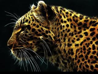 обои Огненный леопард в графике фото