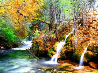 обои Яркий пейзаж осеннего леса и ручейков фото