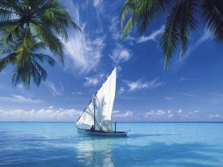 обои Удивительное тропическое море фото