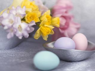 обои Пасхальные яйца и нарцысы фото