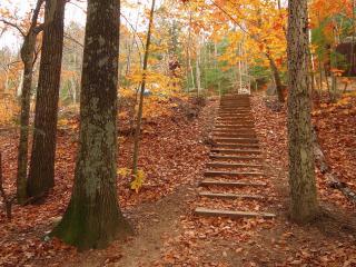 обои Осенний сквер. Ступеньки фото