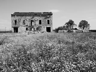 обои Заброшеное строение в поле фото