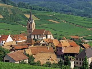 обои Rodern,   Haut-Rhin,   Alsace. Франция фото