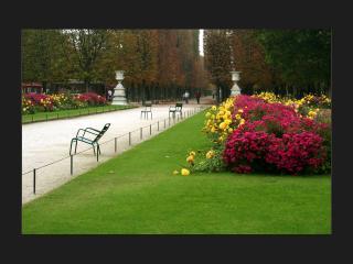 обои Вид на аллею в парке и газон. Франция фото