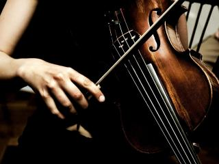 обои Игра на скрипке фото