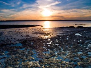 обои Солнце над морем фото