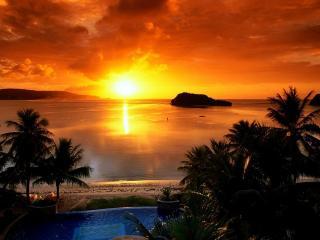 обои Тропический закат фото