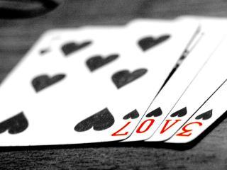 обои Любовь и азарт близкие понятия фото