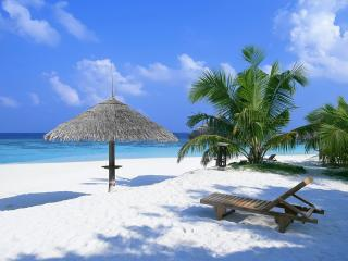 обои Лежак на белом песке фото