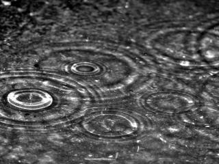 обои Осень наступила,   идет дождь фото