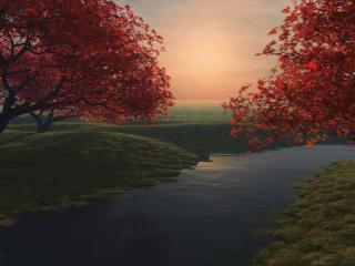 обои Красные деревья на берегу небольшой речки фото